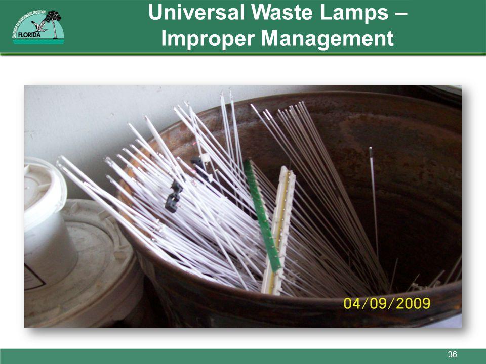 Universal Waste Lamps – Improper Management 36