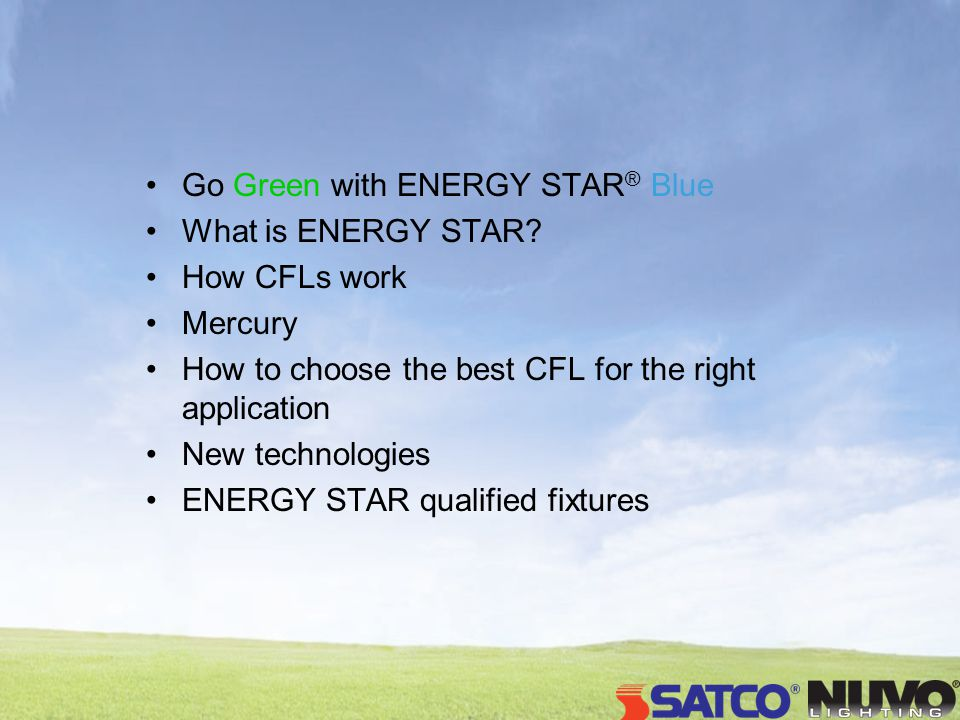 Go Green with ENERGY STAR ® Blue What is ENERGY STAR? How CFLs work Mercury How to choose the best CFL for the right application New technologies ENER