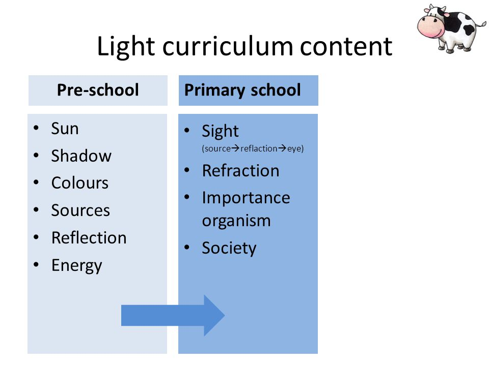Light curriculum content Sun Shadow Colours Sources Reflection Energy Sight (source reflaction eye) Refraction Importance organism Society Pre-schoolPrimary school