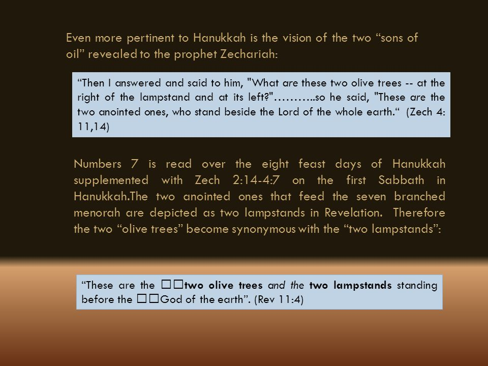 Even more pertinent to Hanukkah is the vision of the two sons of oil revealed to the prophet Zechariah: Then I answered and said to him,