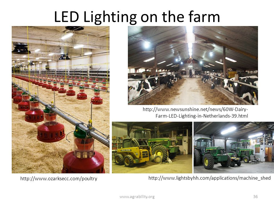 LED Lighting on the farm www.agrability.org36 http://www.newsunshine.net/news/60W-Dairy- Farm-LED-Lighting-in-Netherlands-39.html http://www.lightsbyhh.com/applications/machine_shed http://www.ozarksecc.com/poultry