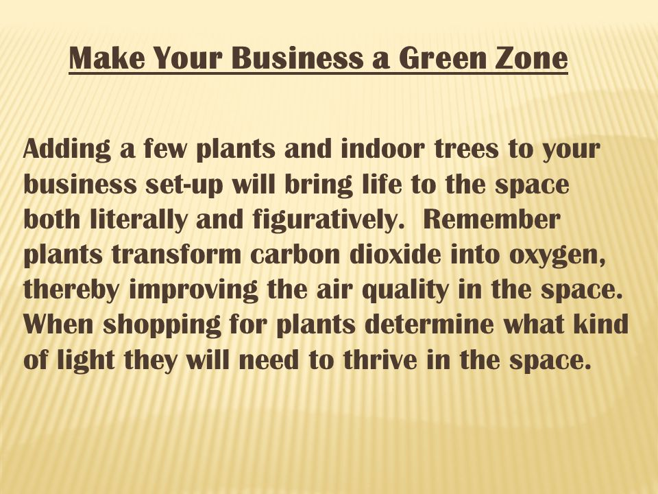 Make Your Business a Green Zone Adding a few plants and indoor trees to your business set-up will bring life to the space both literally and figuratively.