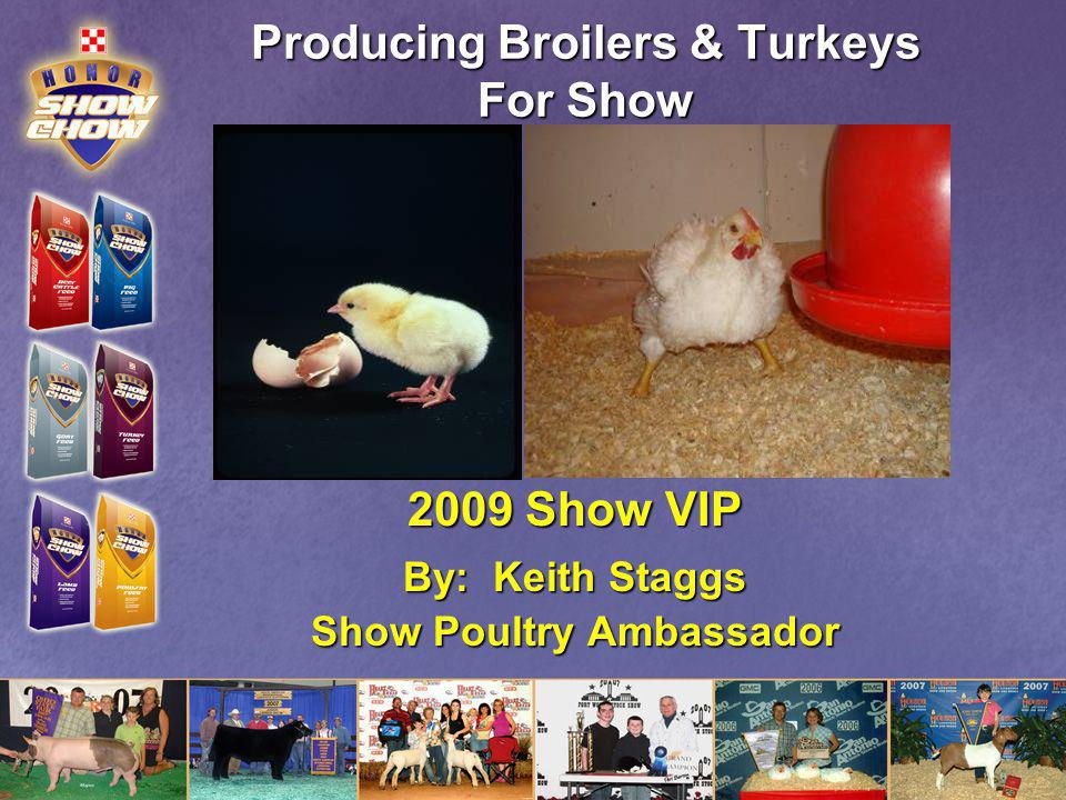Producing Broilers & Turkeys For Show 2009 Show VIP By: Keith Staggs Show Poultry Ambassador
