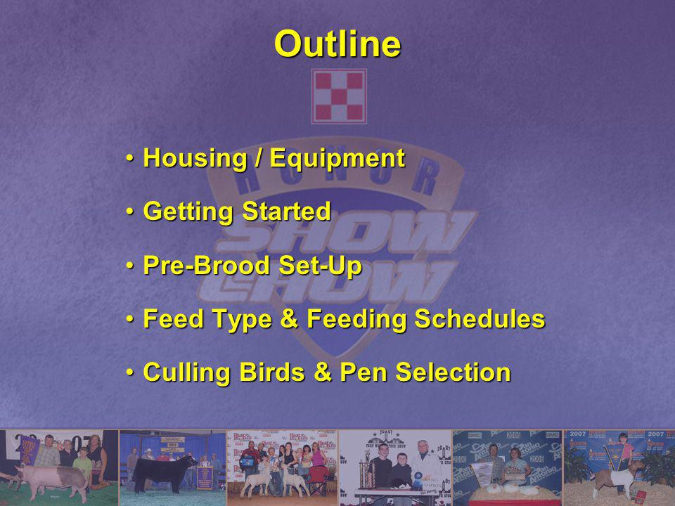 Outline Housing / EquipmentHousing / Equipment Getting StartedGetting Started Pre-Brood Set-UpPre-Brood Set-Up Feed Type & Feeding SchedulesFeed Type