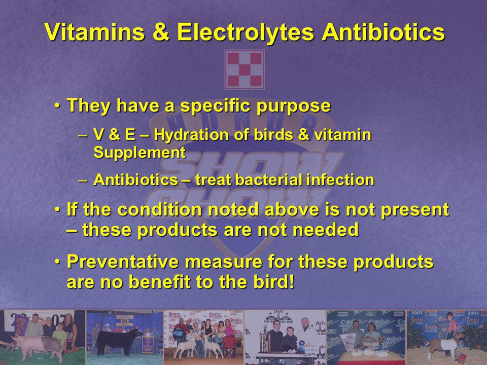 Vitamins & Electrolytes Antibiotics They have a specific purposeThey have a specific purpose –V & E – Hydration of birds & vitamin Supplement –Antibio