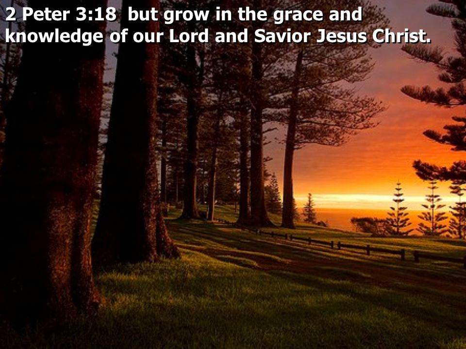 2 Peter 3:18 but grow in the grace and knowledge of our Lord and Savior Jesus Christ.