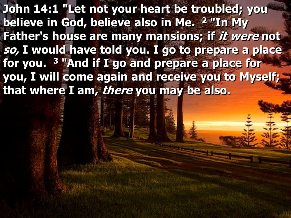 John 14:1 Let not your heart be troubled; you believe in God, believe also in Me.