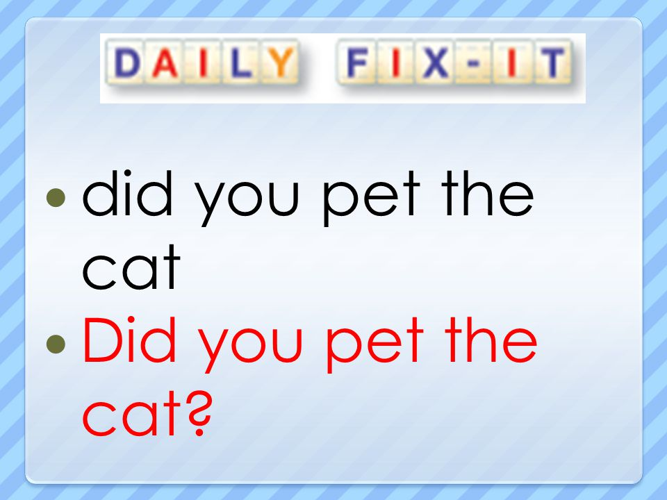 did you pet the cat Did you pet the cat?