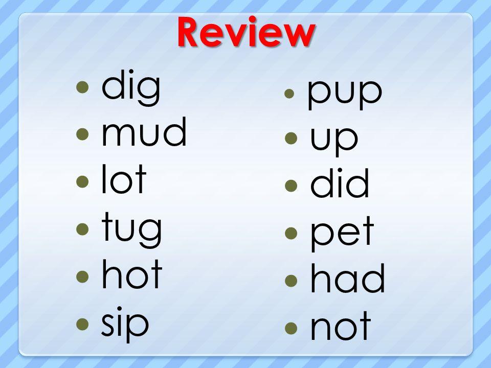 Review dig mud lot tug hot sip pup up did pet had not