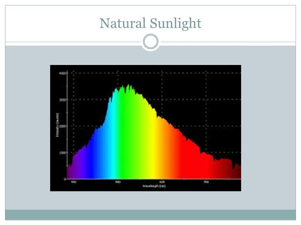 Natural Sunlight