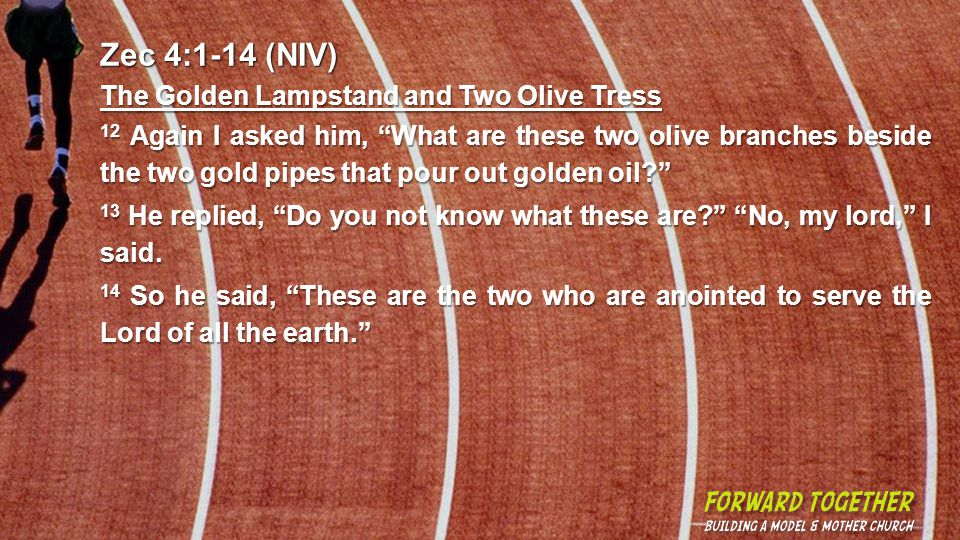 Zec 4:1-14 (NIV) The Golden Lampstand and Two Olive Tress 12 Again I asked him, What are these two olive branches beside the two gold pipes that pour out golden oil.