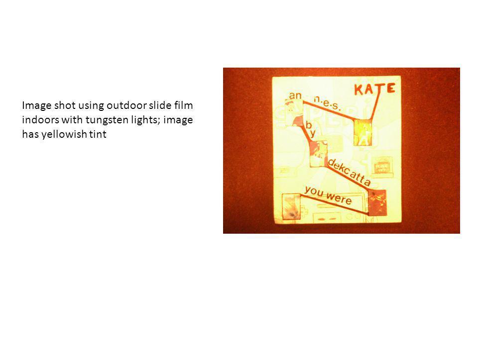 Quartz lightPhotoflood Stands for back drop paper Fabric diffusion box Photoflood kit Miscellaneous lighting equipment