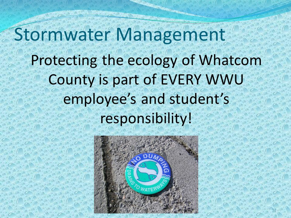 77 Stormwater Management Protecting the ecology of Whatcom County is part of EVERY WWU employees and students responsibility!