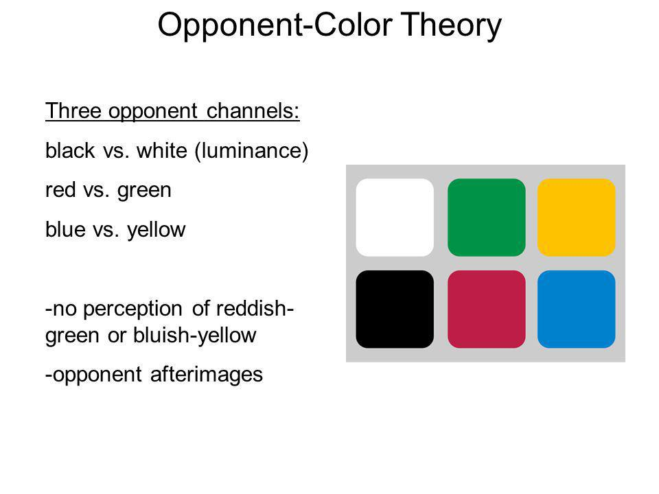 Opponent-Color Theory Three opponent channels: black vs. white (luminance) red vs. green blue vs. yellow -no perception of reddish- green or bluish-ye
