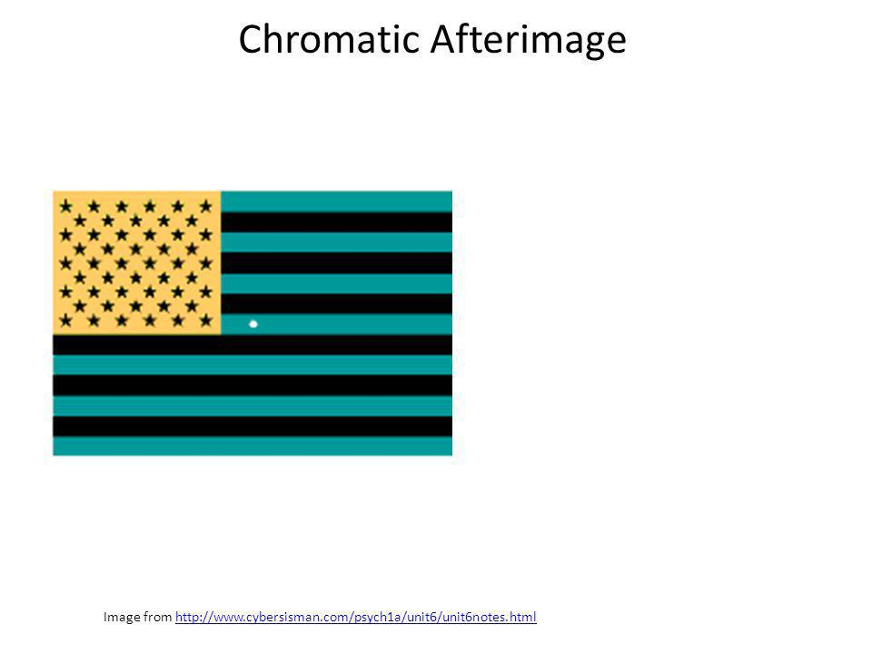 Image from http://www.cybersisman.com/psych1a/unit6/unit6notes.htmlhttp://www.cybersisman.com/psych1a/unit6/unit6notes.html Chromatic Afterimage