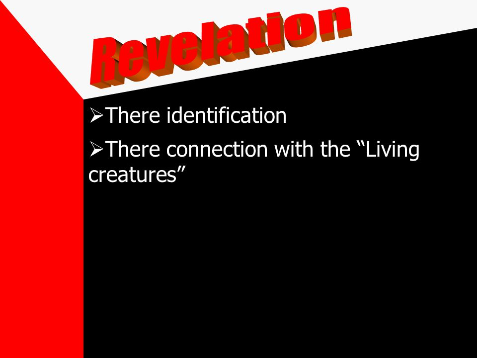 There identification There connection with the Living creatures