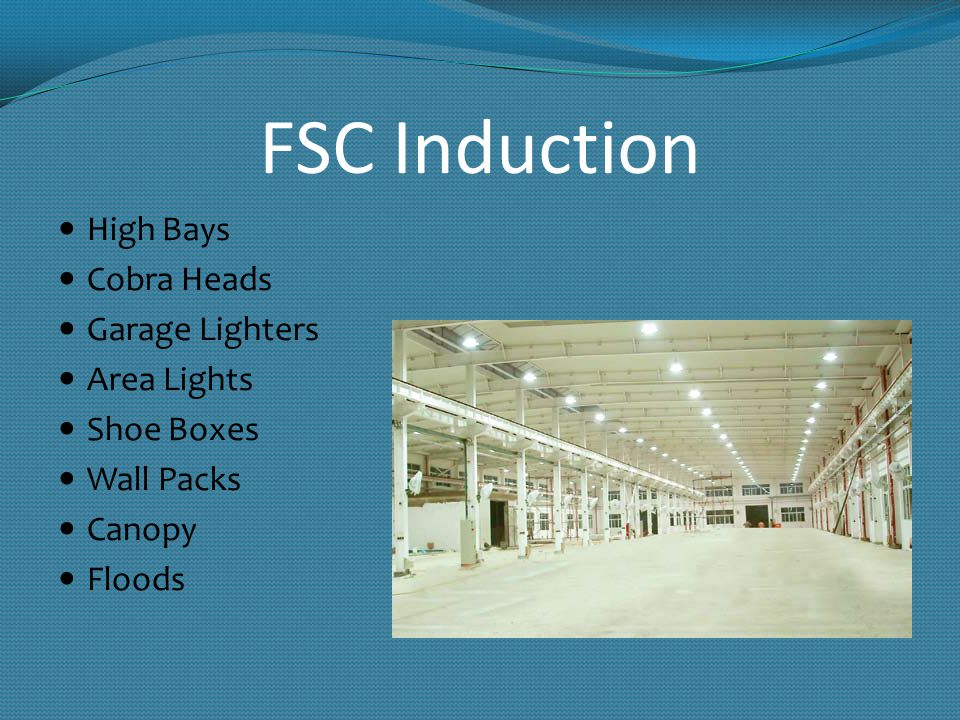 FSC Induction High Bays Cobra Heads Garage Lighters Area Lights Shoe Boxes Wall Packs Canopy Floods