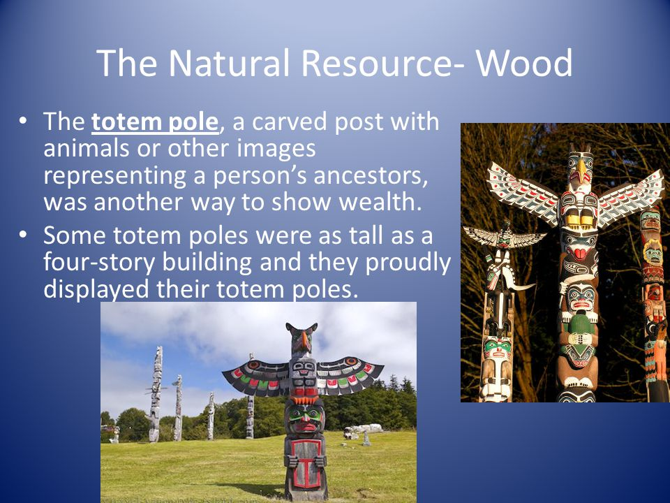 The Natural Resource- Wood The totem pole, a carved post with animals or other images representing a persons ancestors, was another way to show wealth.