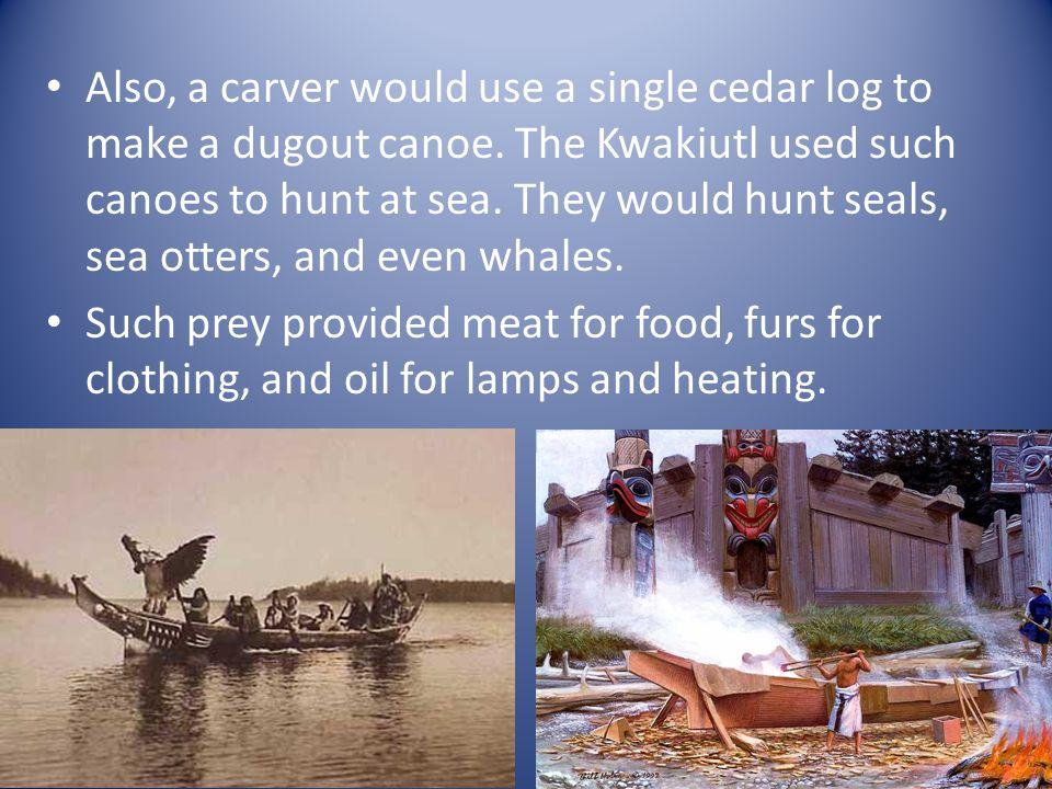 Also, a carver would use a single cedar log to make a dugout canoe.
