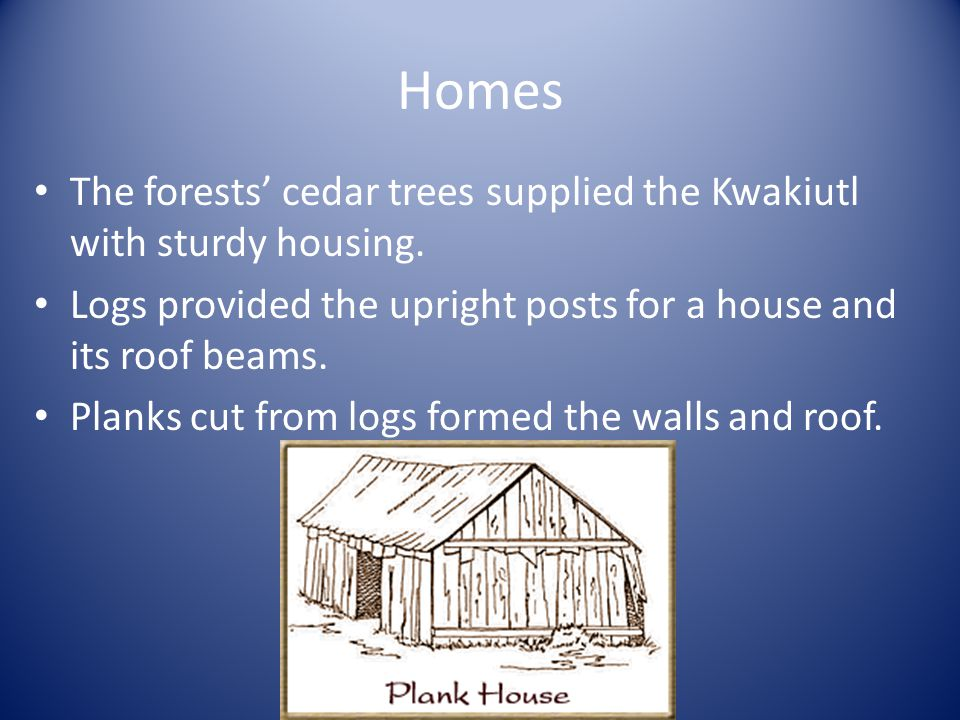 Homes The forests cedar trees supplied the Kwakiutl with sturdy housing.