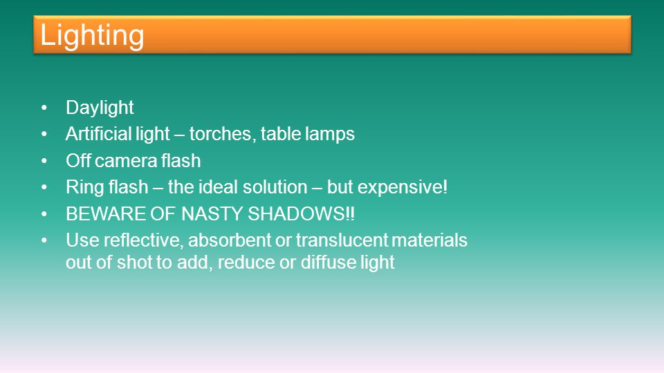 Lighting Daylight Artificial light – torches, table lamps Off camera flash Ring flash – the ideal solution – but expensive.