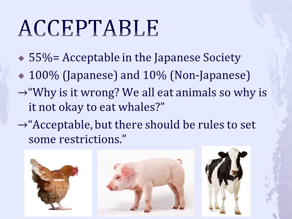 55%= Acceptable in the Japanese Society 100% (Japanese) and 10% (Non-Japanese) Why is it wrong? We all eat animals so why is it not okay to eat whales