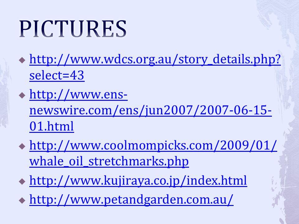 http://www.wdcs.org.au/story_details.php? select=43 http://www.wdcs.org.au/story_details.php? select=43 http://www.ens- newswire.com/ens/jun2007/2007-
