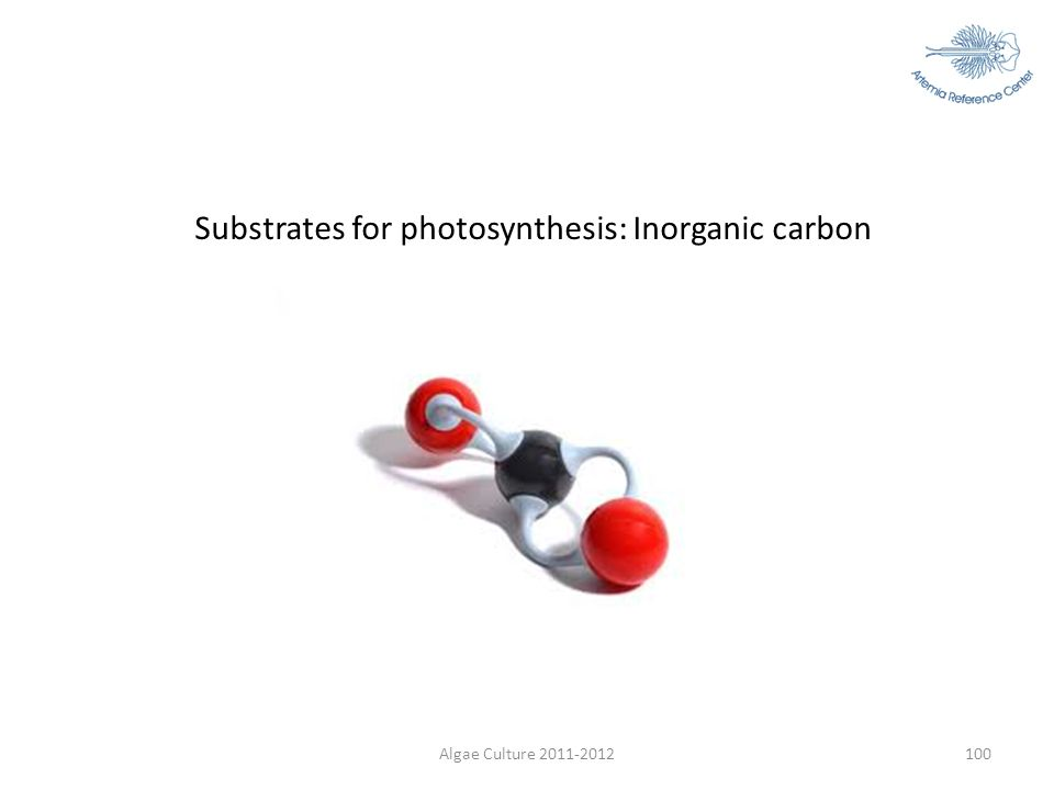 Algae Culture 2011-2012100 Substrates for photosynthesis: Inorganic carbon