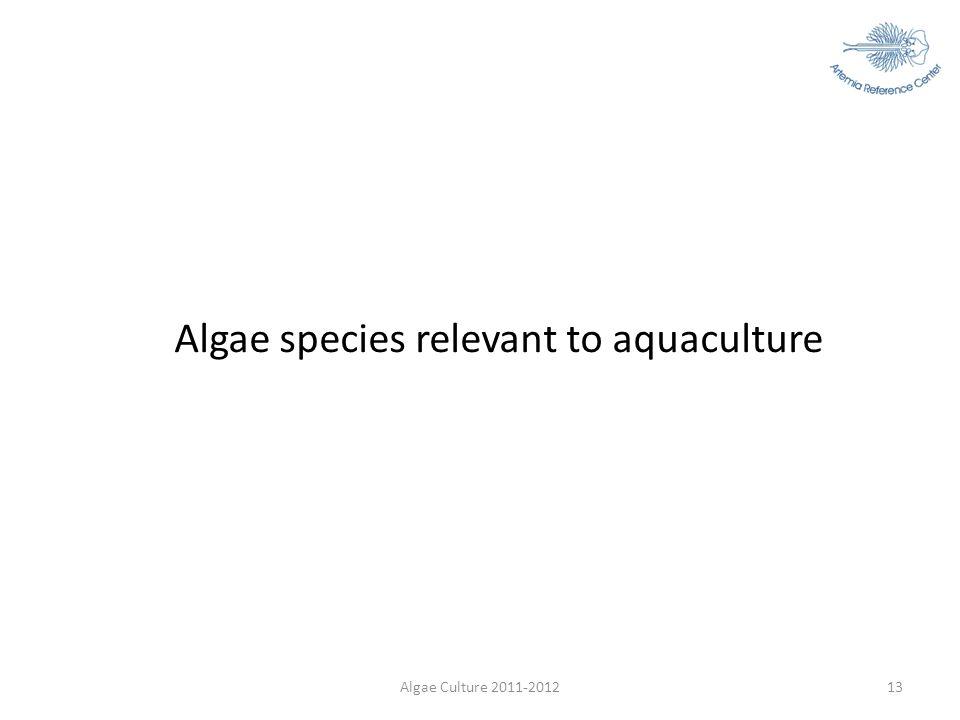 Algae Culture 2011-201213 Algae species relevant to aquaculture
