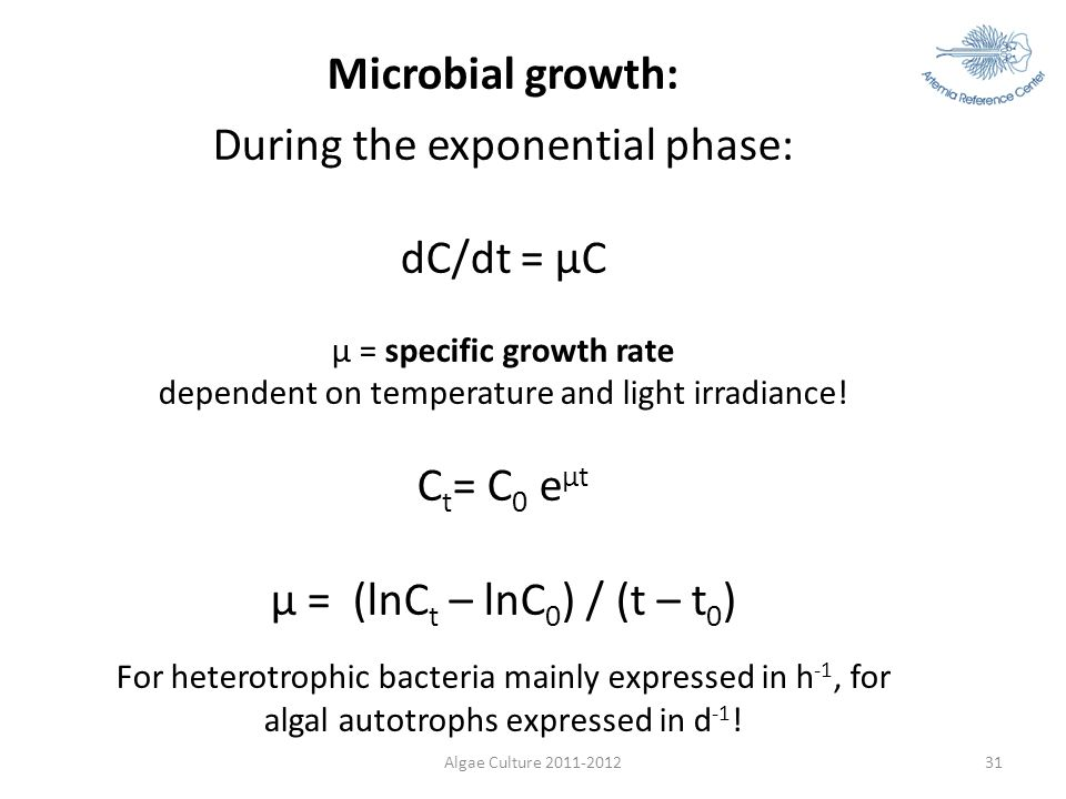Algae Culture 2011-201231 Microbial growth: During the exponential phase: dC/dt = µC µ = specific growth rate dependent on temperature and light irrad