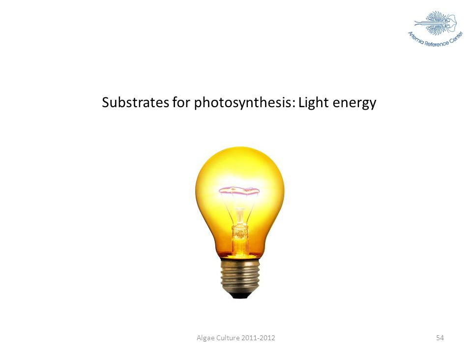Algae Culture 2011-201254 Substrates for photosynthesis: Light energy