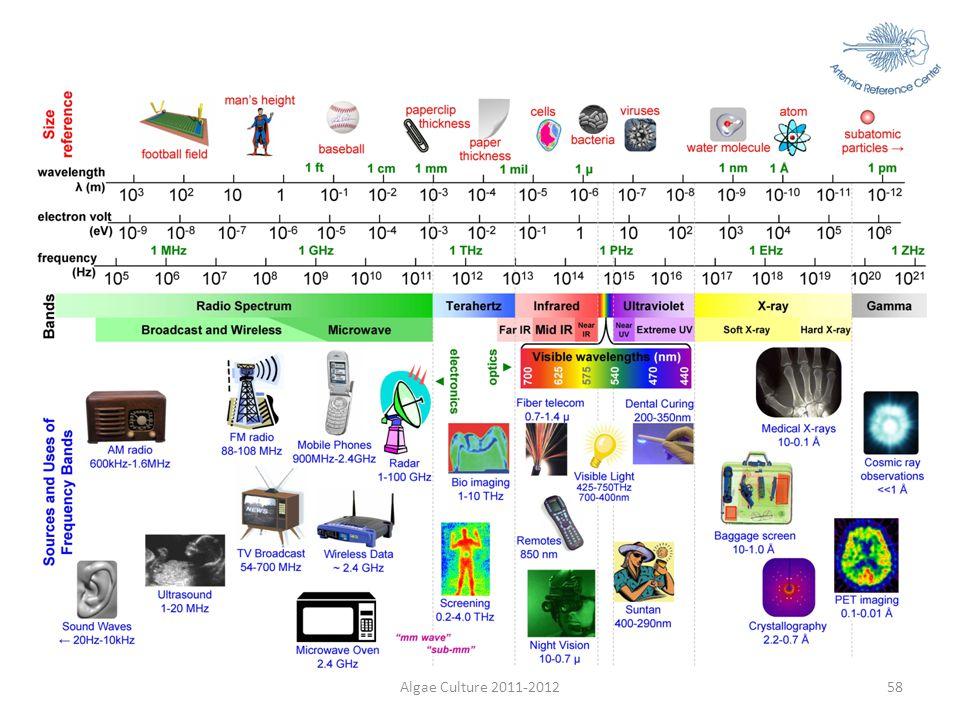 Algae Culture 2011-201258