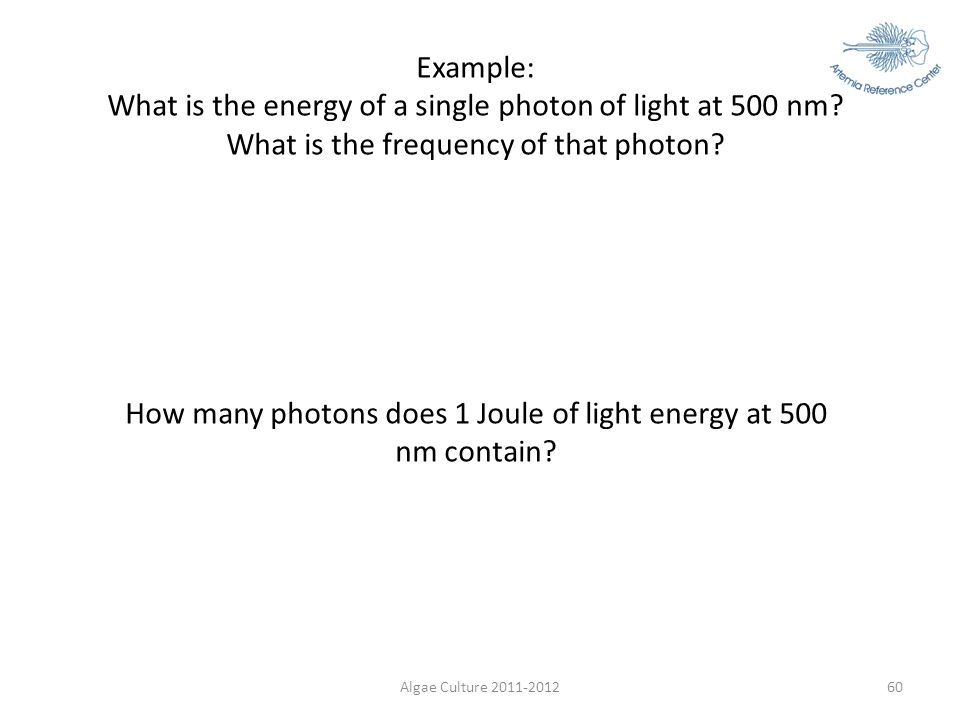 Algae Culture 2011-201260 Example: What is the energy of a single photon of light at 500 nm? What is the frequency of that photon? E = hf = hc/λ E = 6