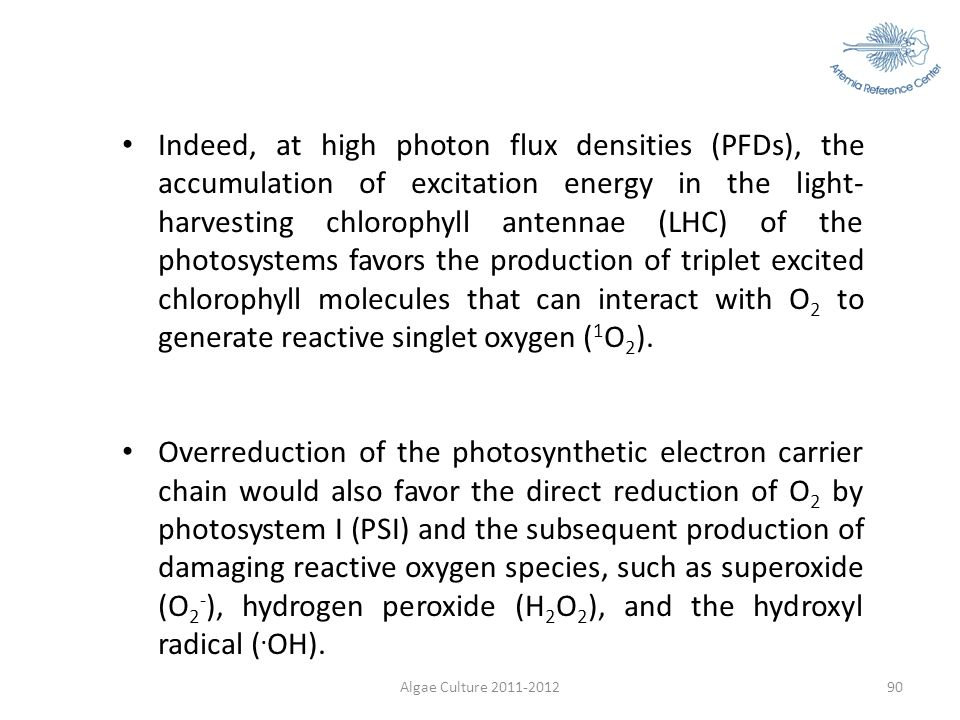 Algae Culture 2011-201290 Indeed, at high photon flux densities (PFDs), the accumulation of excitation energy in the light- harvesting chlorophyll ant
