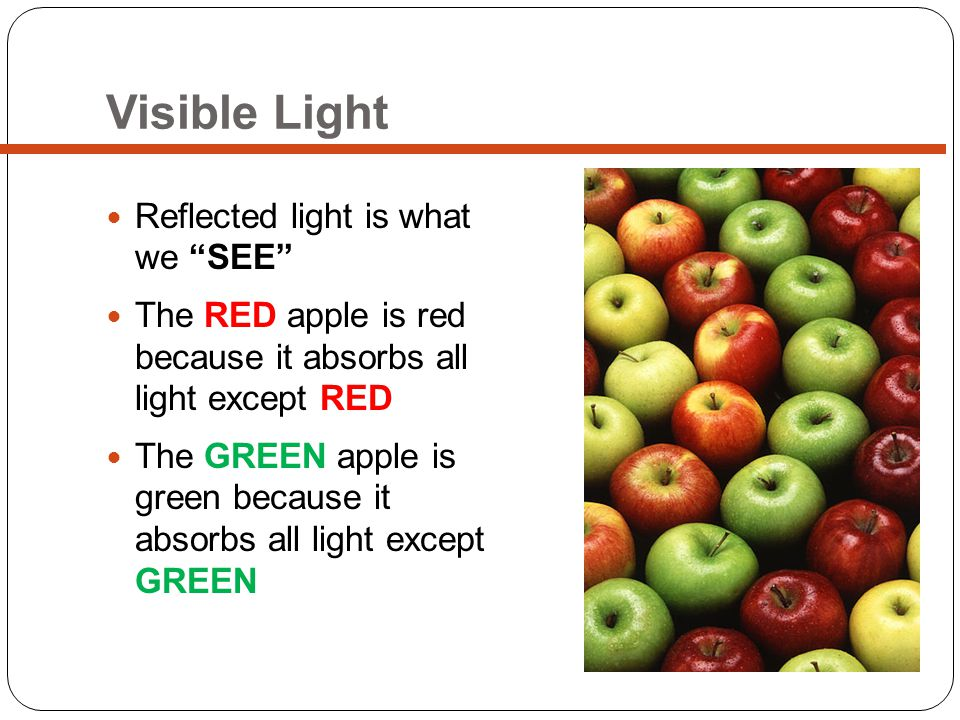 Visible Light Reflected light is what we SEE The RED apple is red because it absorbs all light except RED The GREEN apple is green because it absorbs all light except GREEN