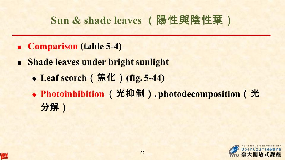 Sun & shade leaves Comparison (table 5-4) Shade leaves under bright sunlight Leaf scorch (fig. 5-44) Photoinhibition, photodecomposition 87