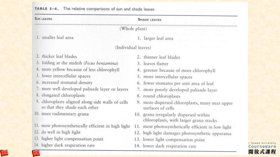 89 Leaf scorch (fig. 5-44)