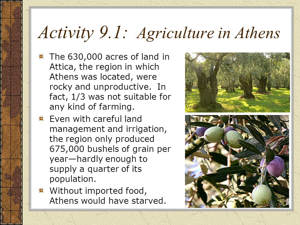 Activity 9.1: Agriculture in Athens The 630,000 acres of land in Attica, the region in which Athens was located, were rocky and unproductive.