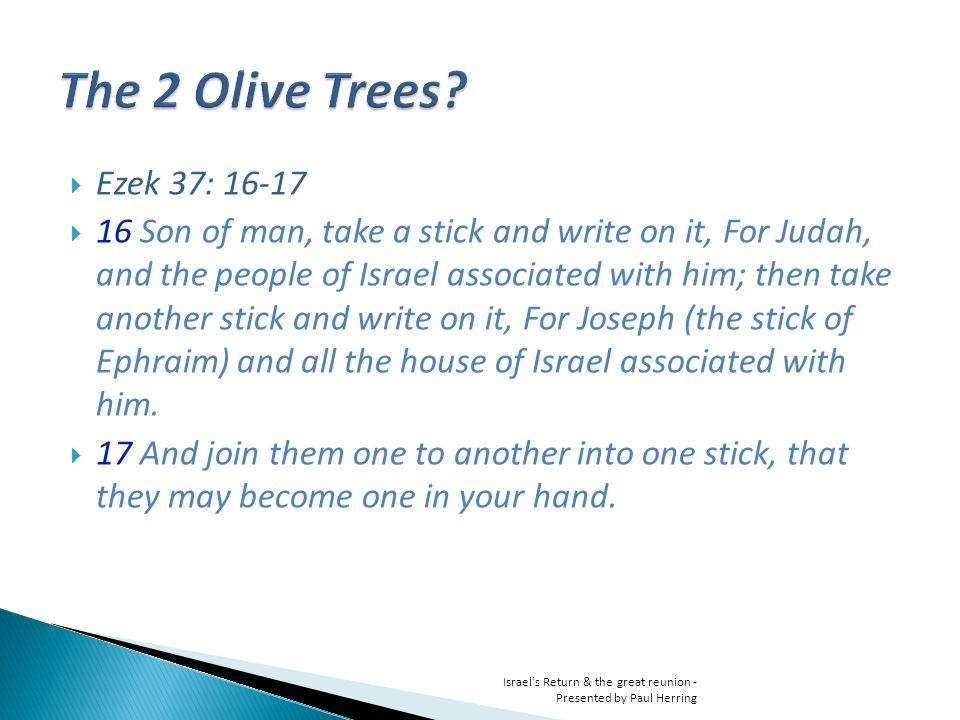 Ezek 37: Son of man, take a stick and write on it, For Judah, and the people of Israel associated with him; then take another stick and write on it, For Joseph (the stick of Ephraim) and all the house of Israel associated with him.