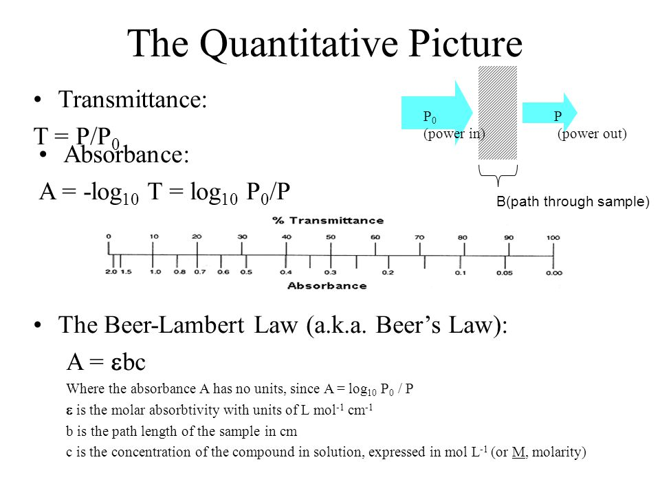 The Quantitative Picture Transmittance: T = P/P 0 B(path through sample) P 0 (power in) P (power out) Absorbance: A = -log 10 T = log 10 P 0 /P The Be