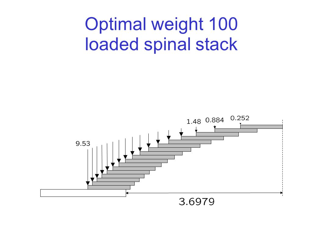 Optimal weight 100 loaded spinal stack