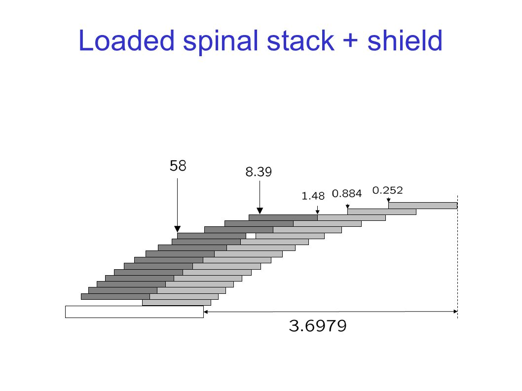 Loaded spinal stack + shield