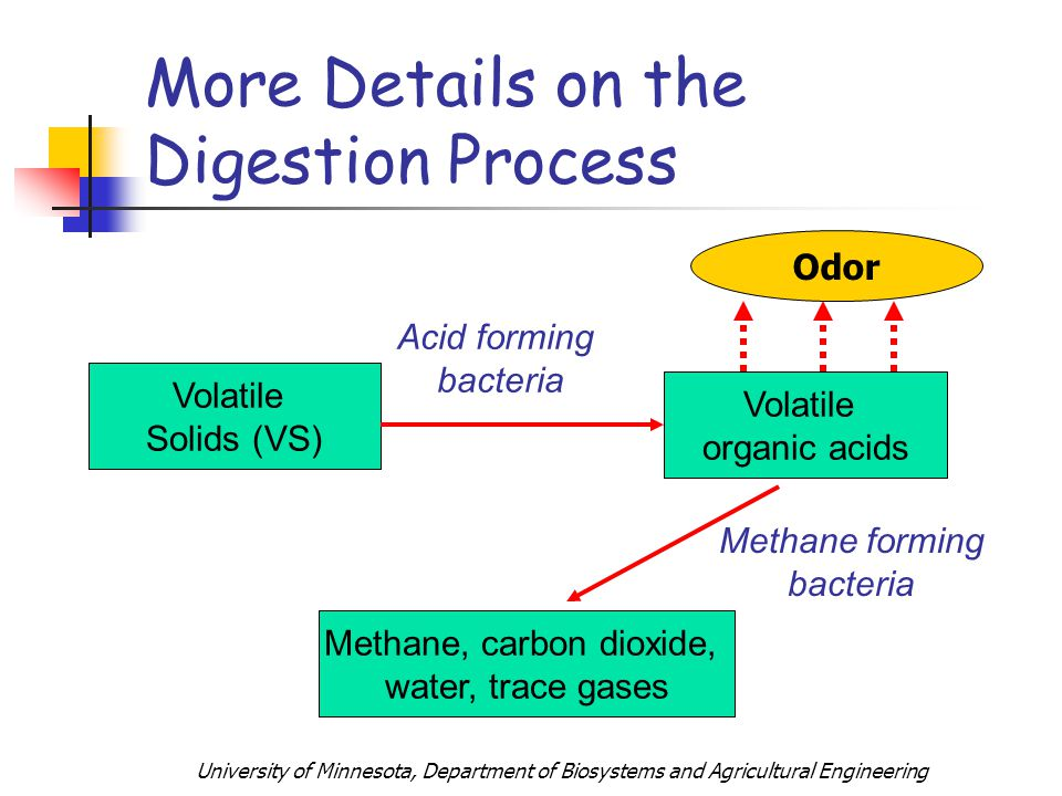 University of Minnesota, Department of Biosystems and Agricultural Engineering More Details on the Digestion Process Volatile Solids (VS) Volatile organic acids Acid forming bacteria Methane, carbon dioxide, water, trace gases Methane forming bacteria Odor