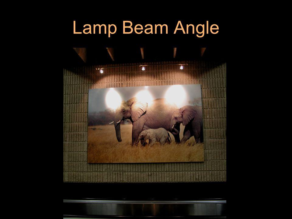 Lamp Beam Angle