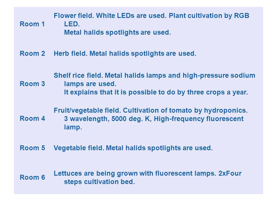 Room 1 Flower field. White LEDs are used. Plant cultivation by RGB LED. Metal halids spotlights are used. Room 2Herb field. Metal halids spotlights ar