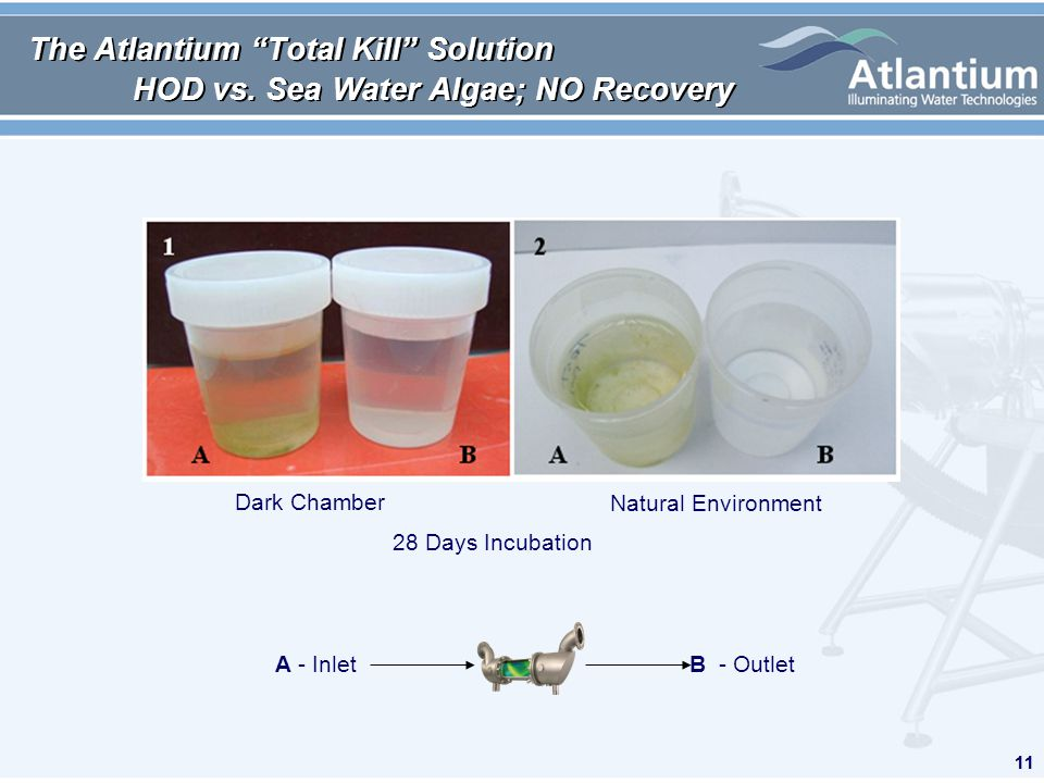 11 The Atlantium Total Kill Solution HOD vs. Sea Water Algae; NO Recovery 11 Dark Chamber Natural Environment 28 Days Incubation A - InletB - Outlet