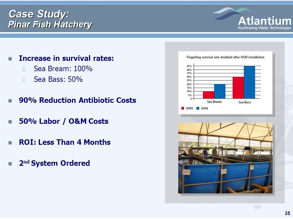 35 Case Study: Pinar Fish Hatchery n Increase in survival rates: Sea Bream: 100% Sea Bass: 50% n 90% Reduction Antibiotic Costs n 50% Labor / O&M Cost