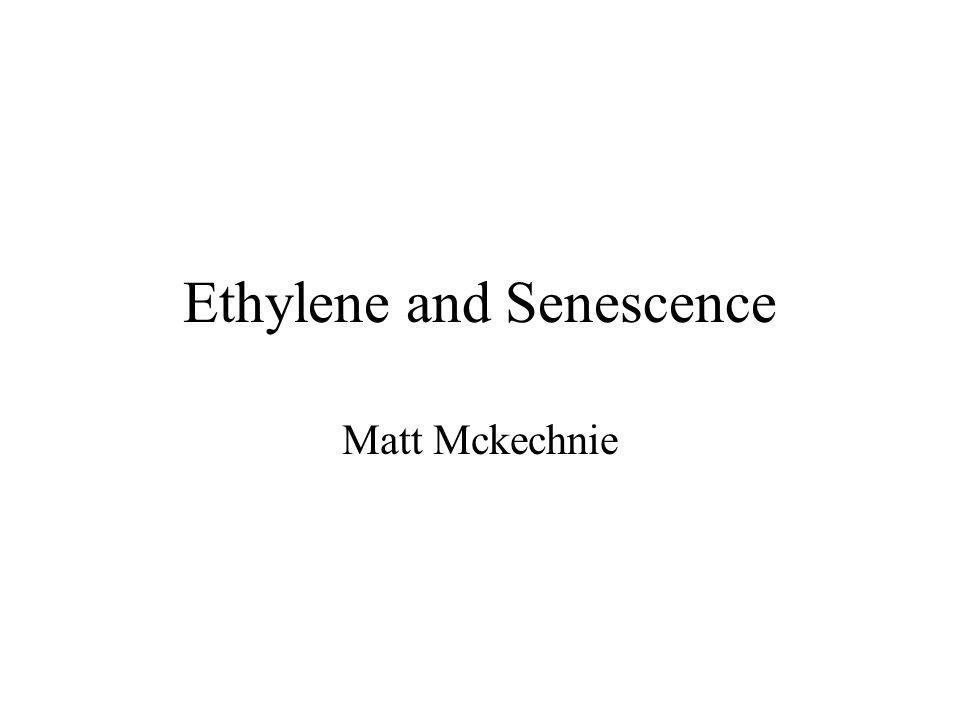Ethylene and Senescence Matt Mckechnie