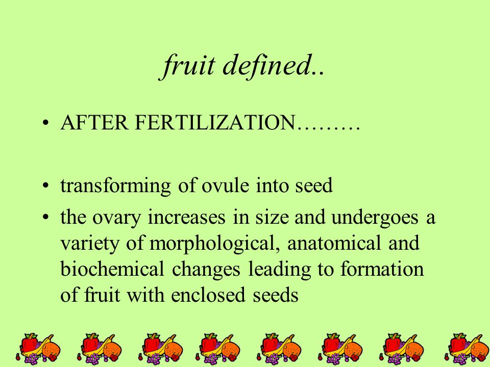 fruit defined..