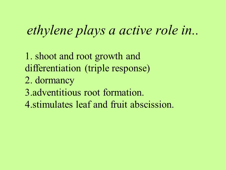 ethylene plays a active role in..1. shoot and root growth and differentiation (triple response) 2.